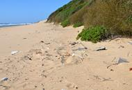 attractive beach line marred by plastic litter